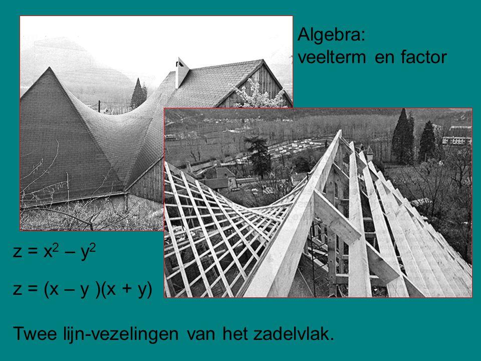 z = x 2 – y 2 z = (x – y )(x + y) Twee lijn-vezelingen van het zadelvlak. Algebra: veelterm en factor