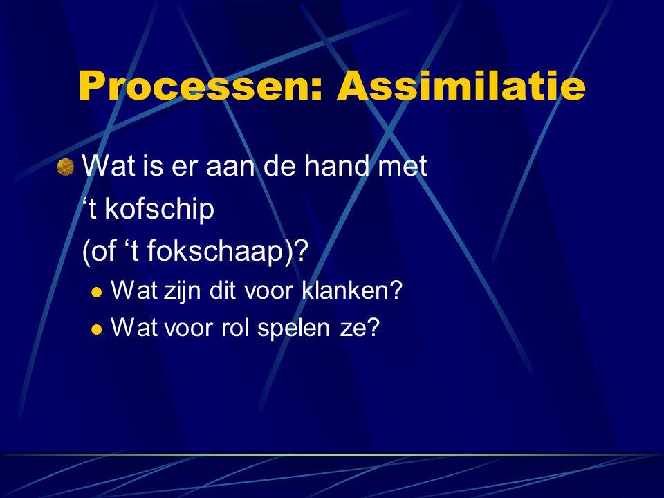 Processen: Assimilatie Wat is er aan de hand met 't kofschip (of 't fokschaap).