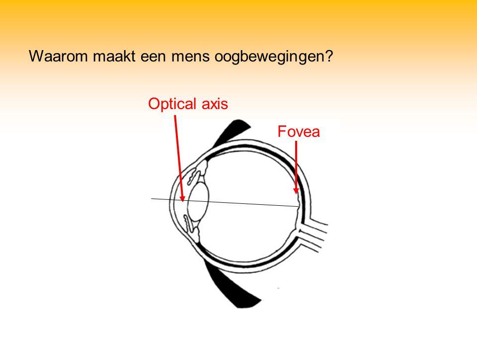 Optical axis Fovea Waarom maakt een mens oogbewegingen?