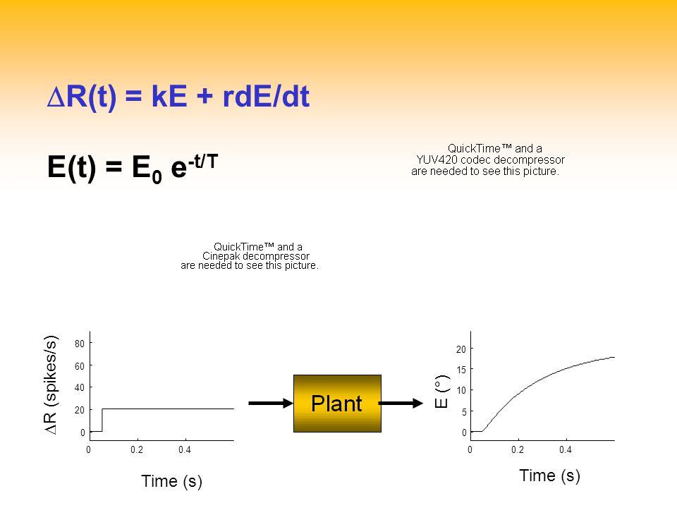 .   R(t) = kE + rdE/dt E(t) = E 0 e -t/T 00.20.4 0 5 10 15 20 E (°) Time (s) 00.20.4 0 20 40 60 80 Time (s)  R (spikes/s)
