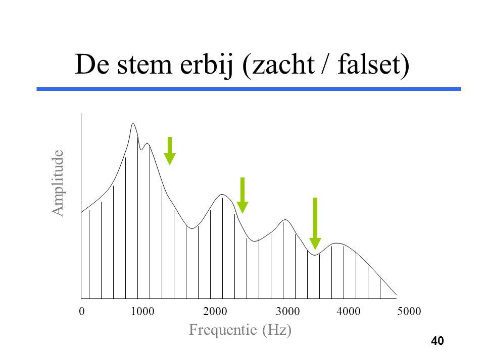 39 De stem erbij Frequentie (Hz) Amplitude 0 1000 2000 3000 4000 5000