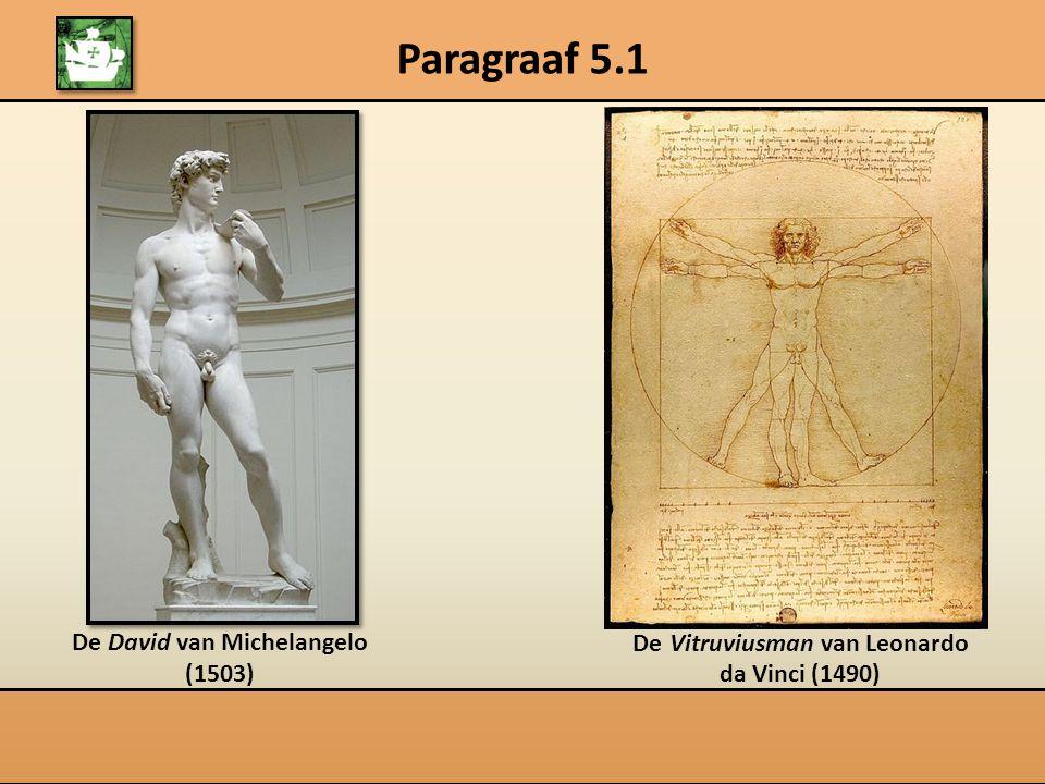 Paragraaf 5.1 De David van Michelangelo (1503) De Vitruviusman van Leonardo da Vinci (1490)