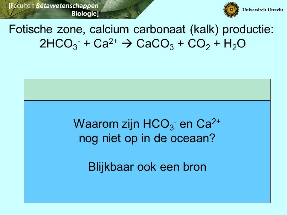 Fotische zone, calcium carbonaat (kalk) productie: 2HCO 3 - + Ca 2+  CaCO 3 + CO 2 + H 2 O Waarom zijn HCO 3 - en Ca 2+ nog niet op in de oceaan? Bli