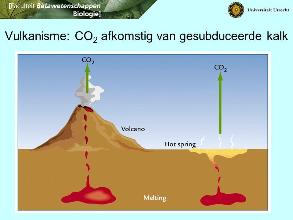 Vulkanisme: CO 2 afkomstig van gesubduceerde kalk