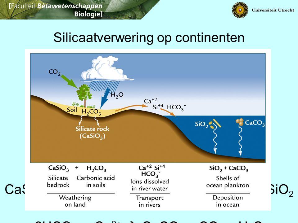 Silicaatverwering op continenten CaSiO 3 + 2H 2 O + 2CO 2  Ca 2+ + 2HCO 3 - + SiO 2 + H 2 O 2HCO 3 - + Ca 2+  CaCO 3 + CO 2 + H 2 O