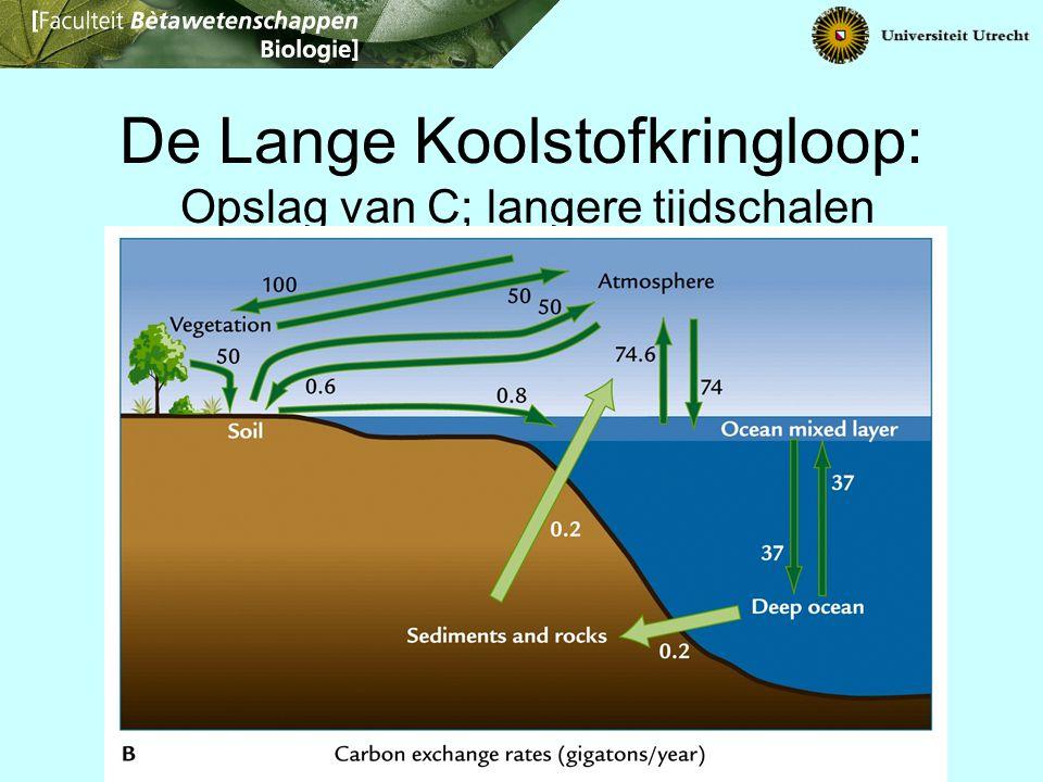 De Lange Koolstofkringloop: Opslag van C; langere tijdschalen