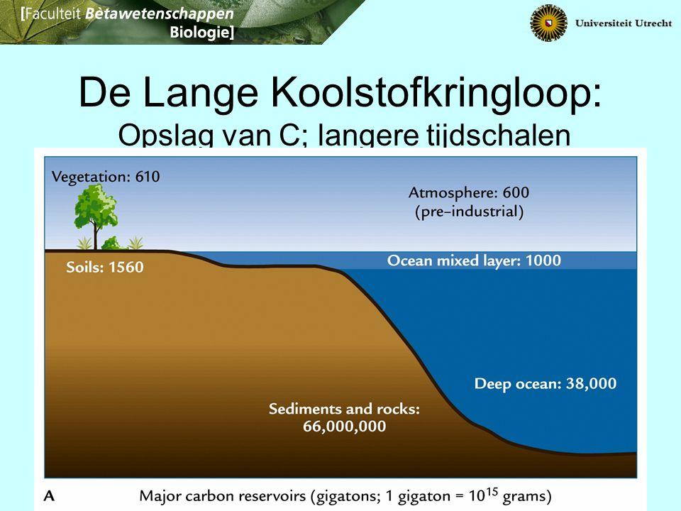 Fossiele brandstoffen: 5,000 Methaan in hydraatvorm: ~5,000 De Lange Koolstofkringloop: Opslag van C; langere tijdschalen