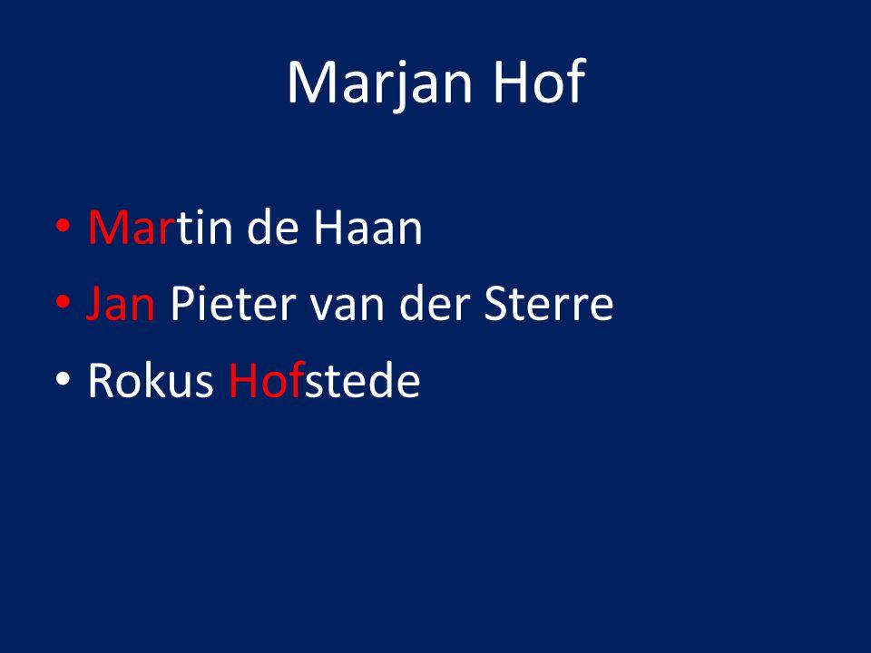 Hoofdvragen dossier Wat is de positie in het vertaalveld van Rokus Hofstede, Martin de Haan en Jan Pieter van der Sterre.