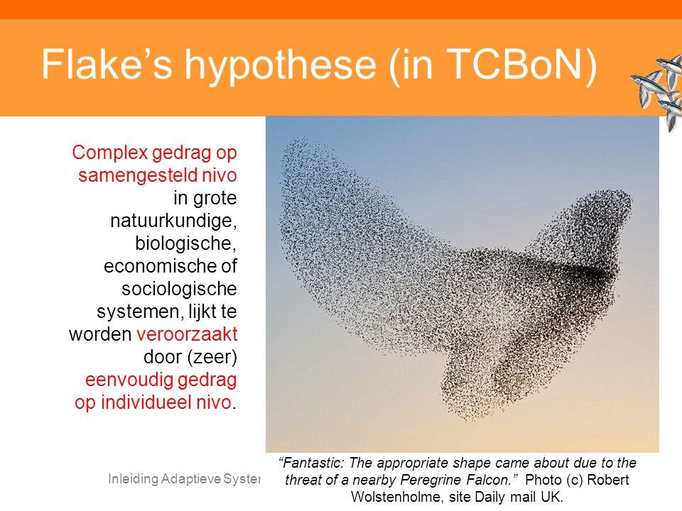 Inleiding Adaptieve Systemen, Opleiding CKI, Utrecht. Auteur: Gerard Vreeswijk Flake's hypothese (in TCBoN) Complex gedrag op samengesteld nivo in gro