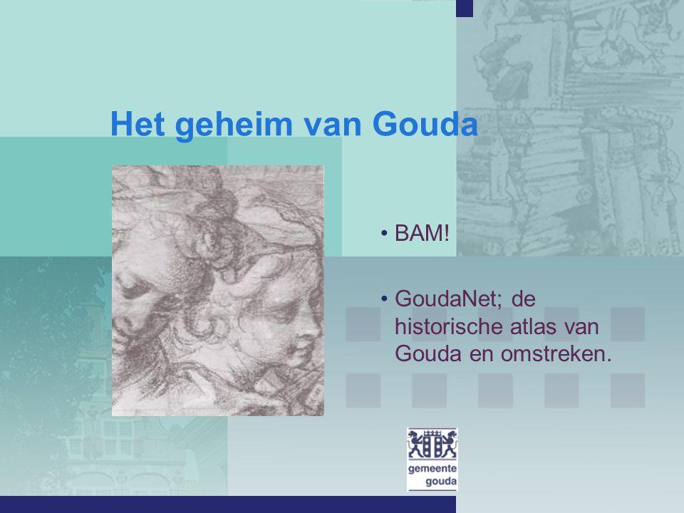 GoudaNet: de historische atlas van Gouda en omstreken.
