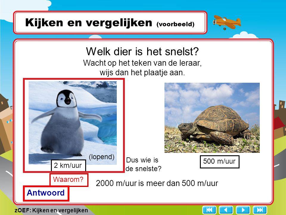 zOEF: Kijken en vergelijken Kijken en vergelijken (voorbeeld) 2 km/uur Dus wie is de snelste? Welk dier is het snelst? Wacht op het teken van de leraa
