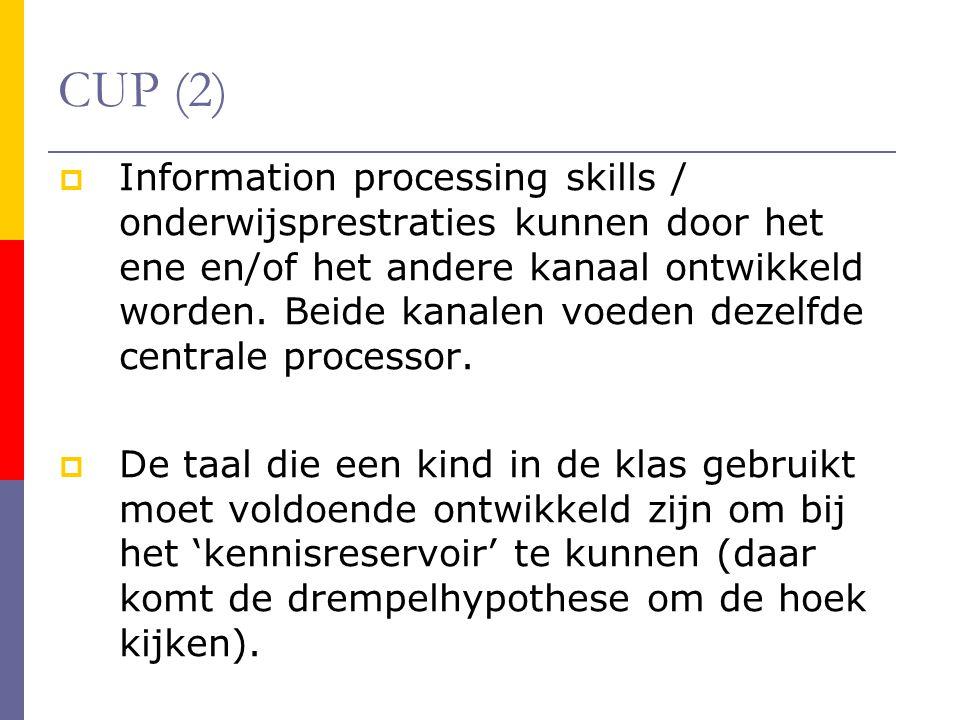 CUP (2)  Information processing skills / onderwijsprestraties kunnen door het ene en/of het andere kanaal ontwikkeld worden.