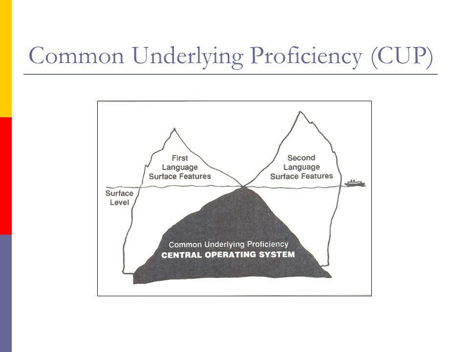 Met betrekking tot Common Underlying Proficiency (IJsberg-model):  Gedachten ten grondslag aan praten, schrijven etc.