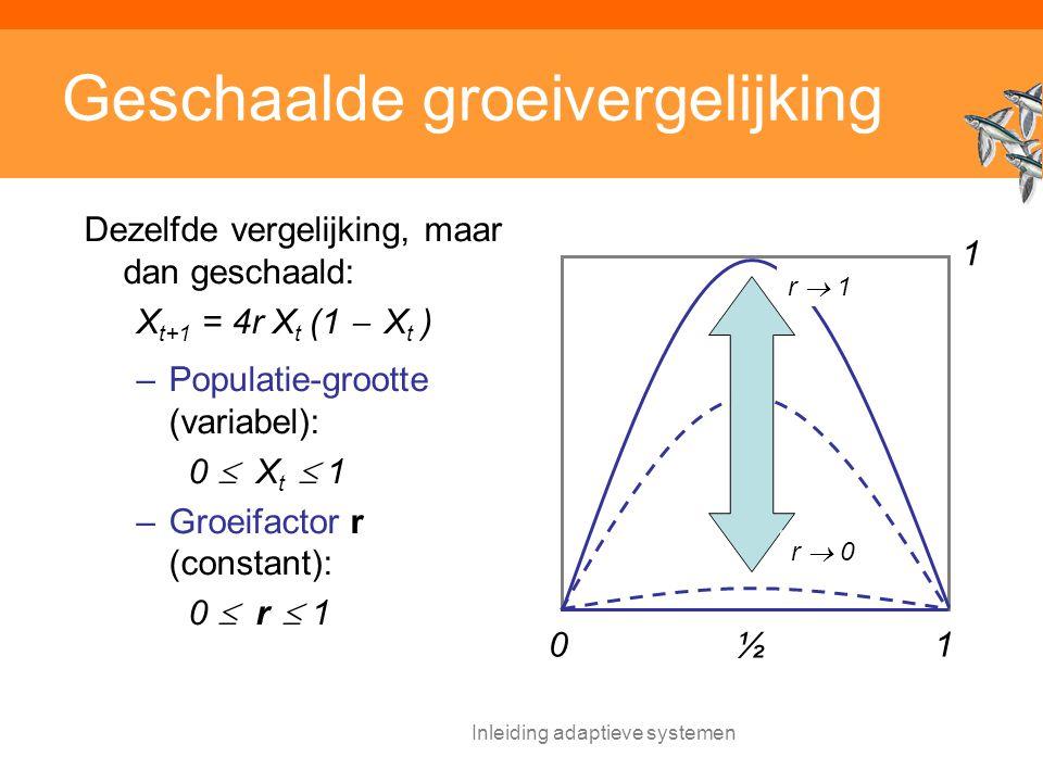 Inleiding adaptieve systemen Geschaalde groeivergelijking Dezelfde vergelijking, maar dan geschaald: X t+1 = 4r X t (1  X t ) –Populatie-grootte (variabel): 0  X t  1 –Groeifactor r (constant): 0  r  1 10 ½ r  0 r  1 1