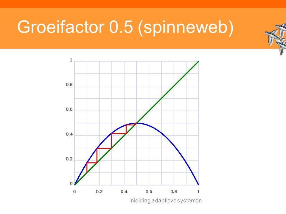 Inleiding adaptieve systemen Groeifactor 0.5 (spinneweb)