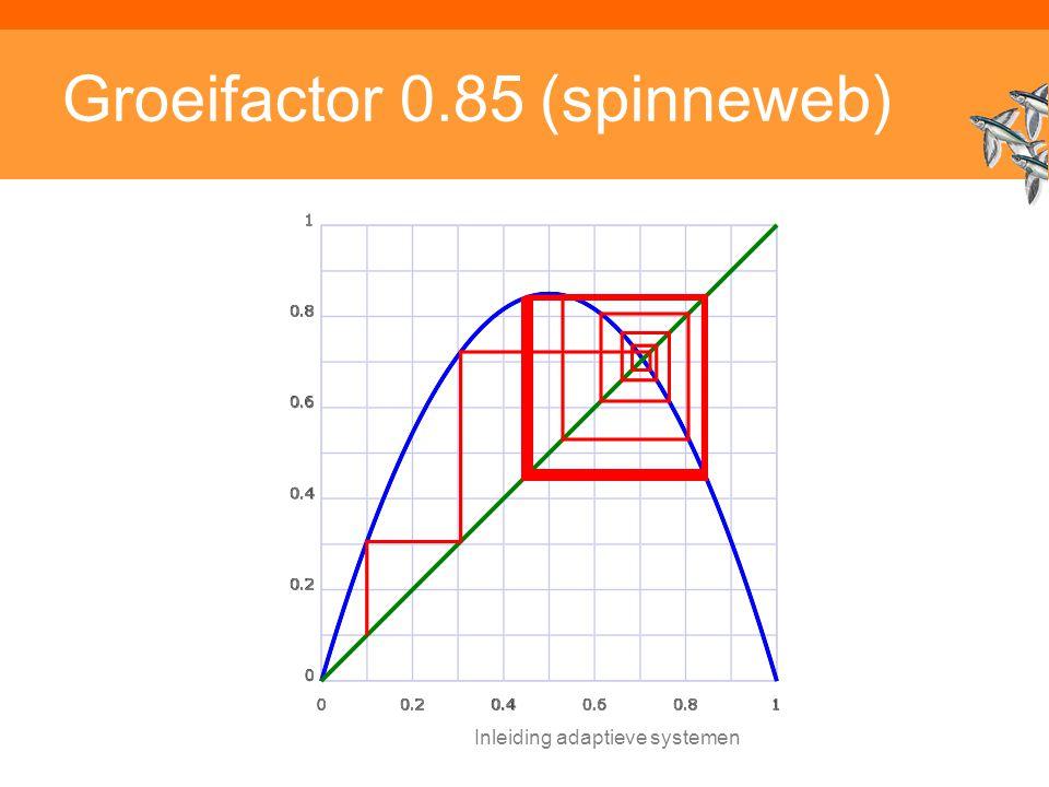 Inleiding adaptieve systemen Groeifactor 0.85 (spinneweb)