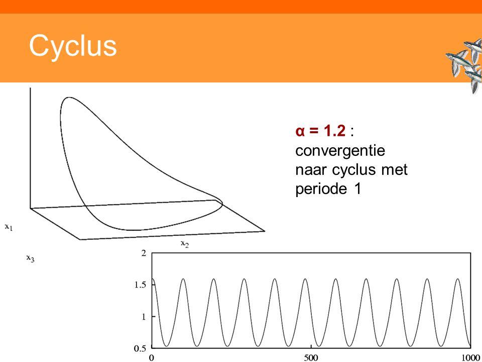 Inleiding adaptieve systemen Cyclus α = 1.2 : convergentie naar cyclus met periode 1