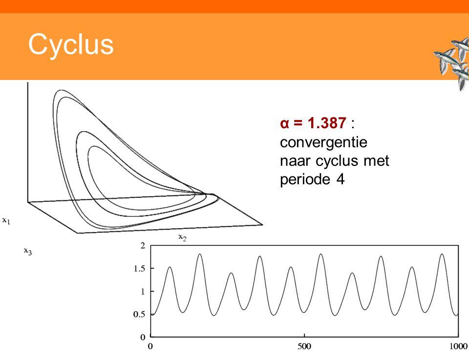 Inleiding adaptieve systemen Cyclus α = 1.387 : convergentie naar cyclus met periode 4