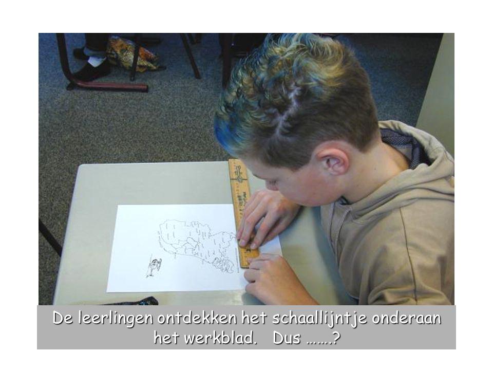 De leerlingen ontdekken het schaallijntje onderaan het werkblad. Dus …….?