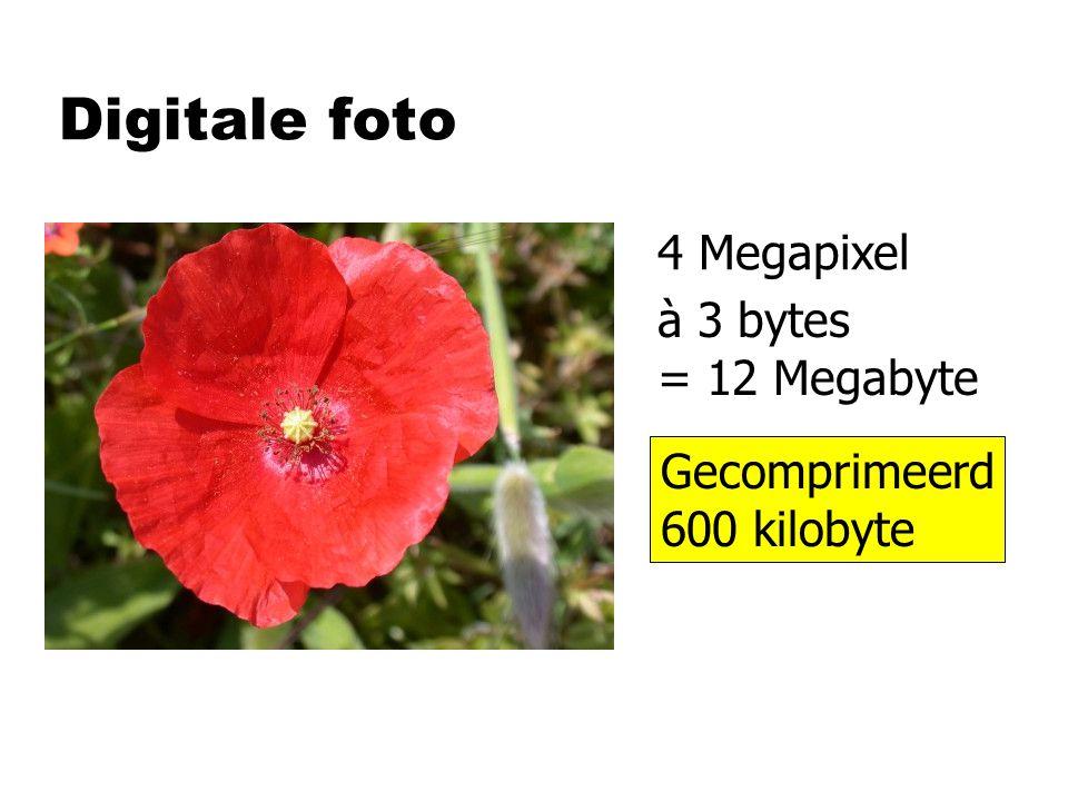 Digitale foto 4 Megapixel à 3 bytes = 12 Megabyte Gecomprimeerd 600 kilobyte