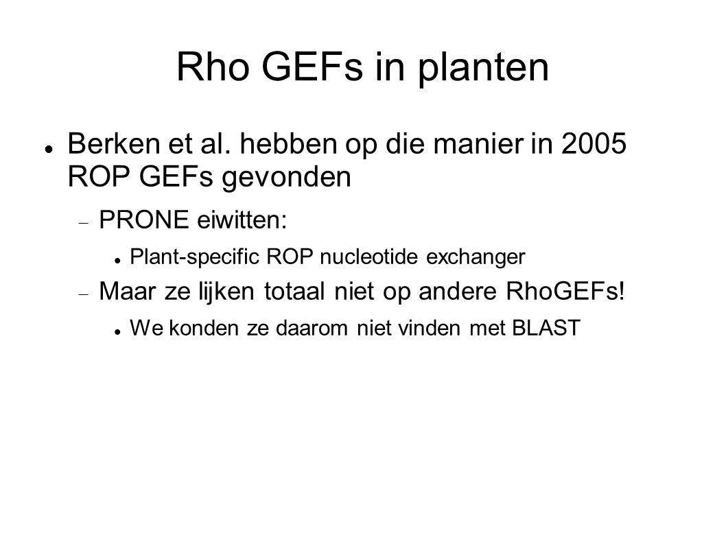 Rho GEFs in planten Berken et al. hebben op die manier in 2005 ROP GEFs gevonden  PRONE eiwitten: Plant-specific ROP nucleotide exchanger  Maar ze l