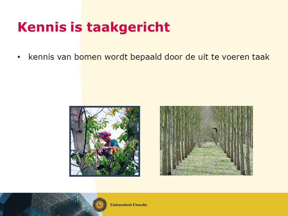 Kennis is taakgericht kennis van bomen wordt bepaald door de uit te voeren taak