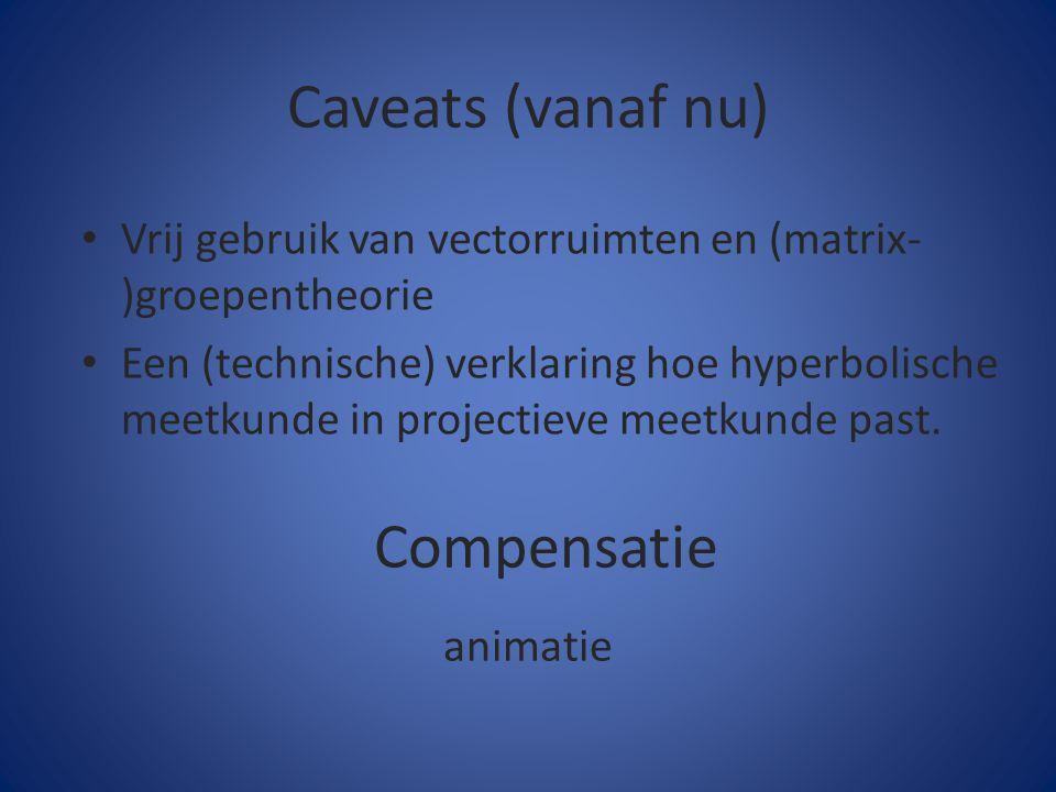 Caveats (vanaf nu) animatie Compensatie Vrij gebruik van vectorruimten en (matrix- )groepentheorie Een (technische) verklaring hoe hyperbolische meetk