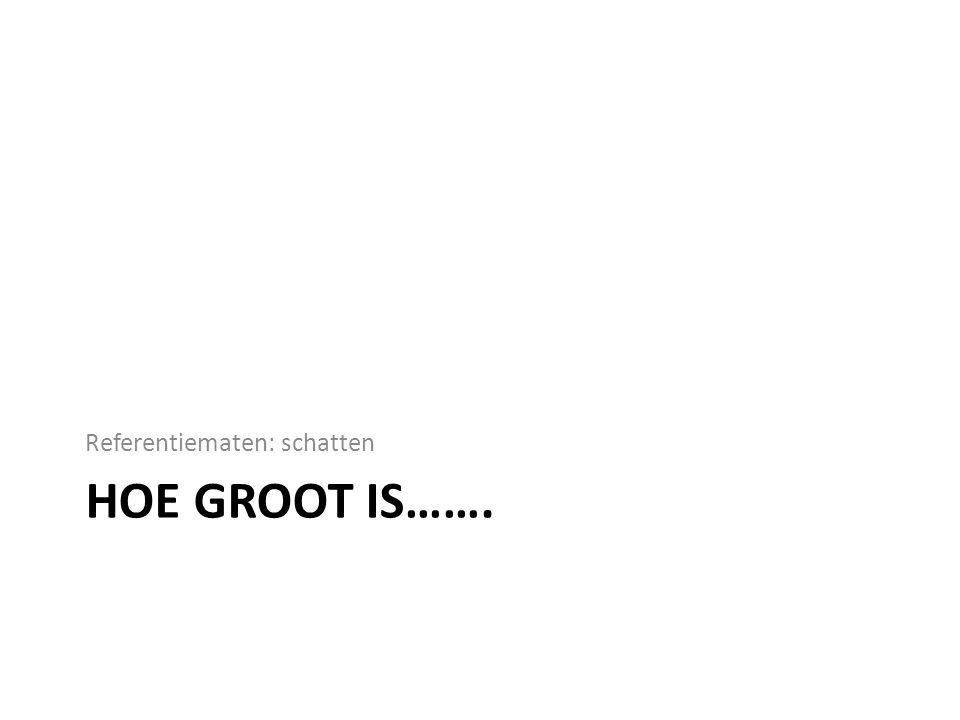 HOE GROOT IS……. Referentiematen: schatten