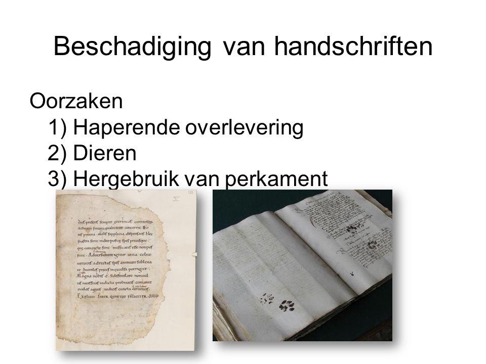 Beschadiging van handschriften Oorzaken 1) Haperende overlevering 2) Dieren 3) Hergebruik van perkament