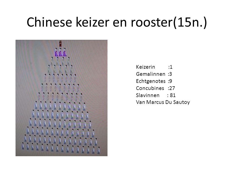 Chinese keizer en rooster(15n.) Keizerin :1 Gemalinnen :3 Echtgenotes :9 Concubines :27 Slavinnen : 81 Van Marcus Du Sautoy