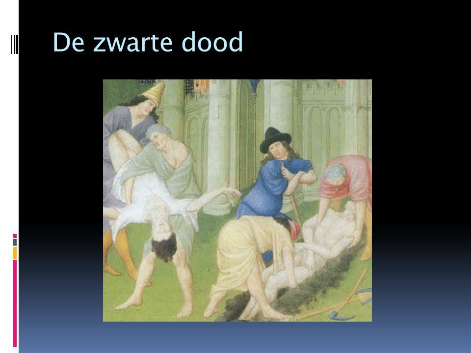 Ziekten in de Middeleeuwen  Hoge sterfte door ziekte  Straf van God  Kwade stoffen in bloed  aderlaten