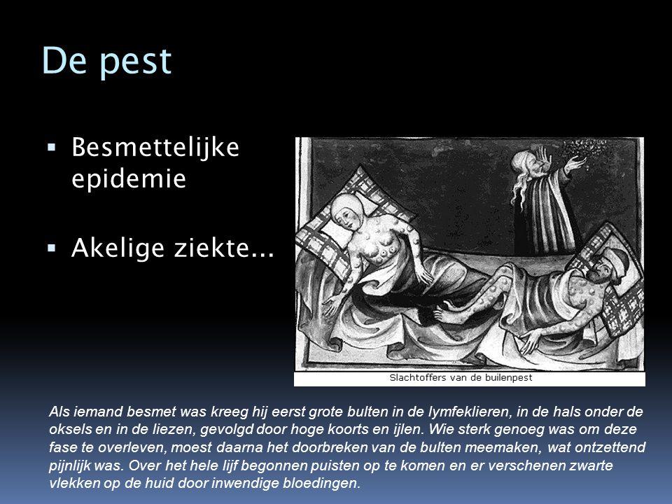 De pest  Besmettelijke epidemie  Akelige ziekte... Als iemand besmet was kreeg hij eerst grote bulten in de lymfeklieren, in de hals onder de oksels