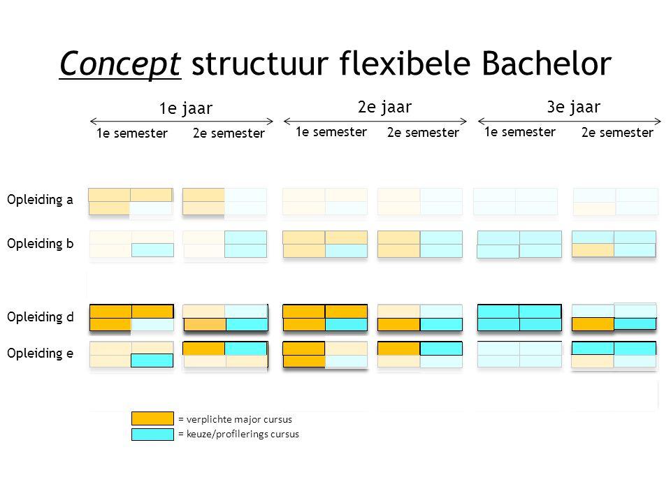 1e jaar 2e jaar3e jaar 1e semester 2e semester 1e semester 2e semester 1e semester 2e semester Concept structuur flexibele Bachelor Opleiding b Opleid