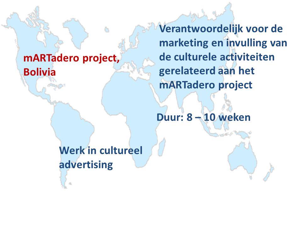 Verantwoordelijk voor de marketing en invulling van de culturele activiteiten gerelateerd aan het mARTadero project Duur: 8 – 10 weken mARTadero project, Bolivia Werk in cultureel advertising