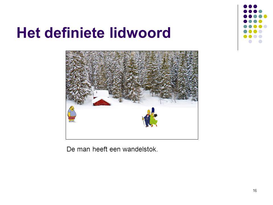 16 Het definiete lidwoord De man heeft een wandelstok.
