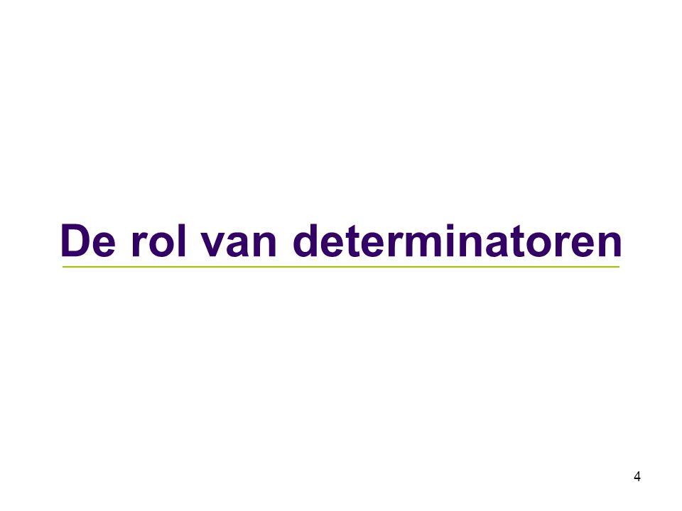 4 De rol van determinatoren
