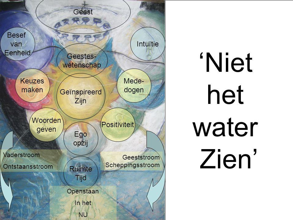 'Niet het water Zien' Ruimte Tijd Geest Intuïtie Mede- dogen Positiviteit Besef van Eenheid Keuzes maken Woorden geven Ego opzij Geestes- wetenschap G