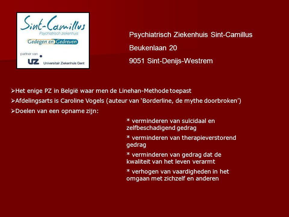 Publicaties Dr. Caroline Vogels BBBBorderline, de mythe doorbroken (2007)