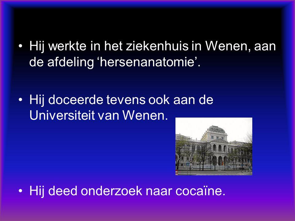 Hij werkte in het ziekenhuis in Wenen, aan de afdeling 'hersenanatomie'.