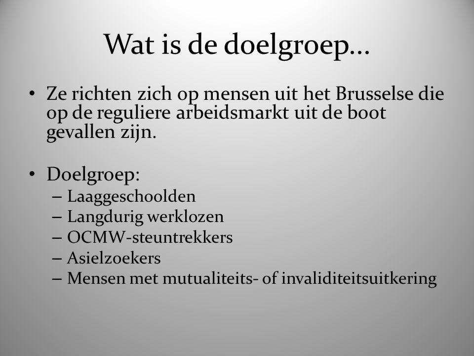 Wat is de doelgroep... Ze richten zich op mensen uit het Brusselse die op de reguliere arbeidsmarkt uit de boot gevallen zijn. Doelgroep: – Laaggescho