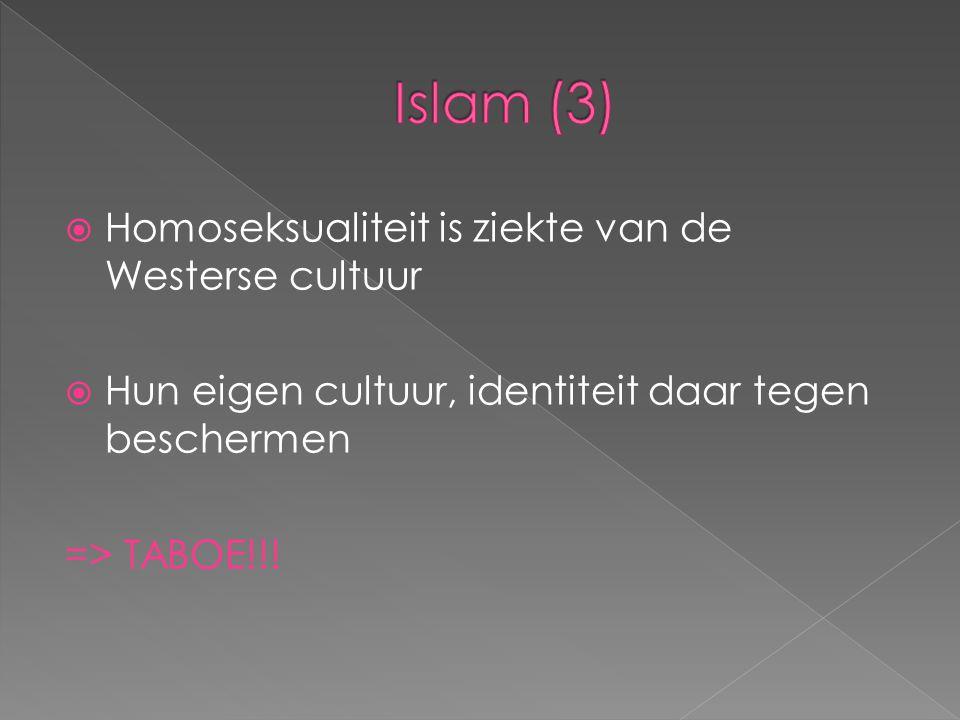  Homoseksualiteit is ziekte van de Westerse cultuur  Hun eigen cultuur, identiteit daar tegen beschermen => TABOE!!!