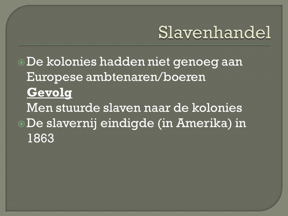  De kolonies hadden niet genoeg aan Europese ambtenaren/boeren Gevolg Men stuurde slaven naar de kolonies  De slavernij eindigde (in Amerika) in 186