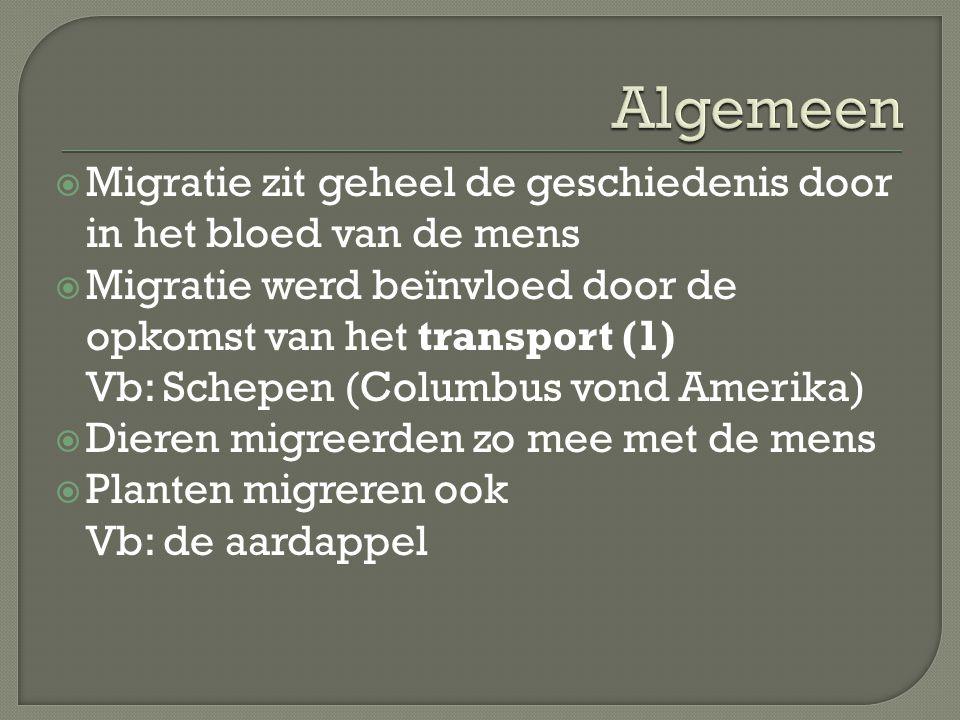  Migratie zit geheel de geschiedenis door in het bloed van de mens  Migratie werd beïnvloed door de opkomst van het transport (1) Vb: Schepen (Colum