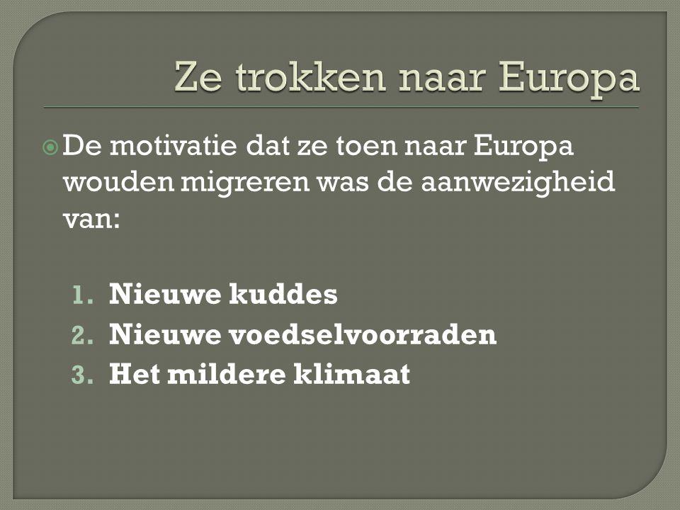  De motivatie dat ze toen naar Europa wouden migreren was de aanwezigheid van: 1. Nieuwe kuddes 2. Nieuwe voedselvoorraden 3. Het mildere klimaat
