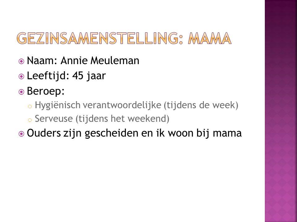  Naam: Annie Meuleman  Leeftijd: 45 jaar  Beroep: o Hygiënisch verantwoordelijke (tijdens de week) o Serveuse (tijdens het weekend)  Ouders zijn g