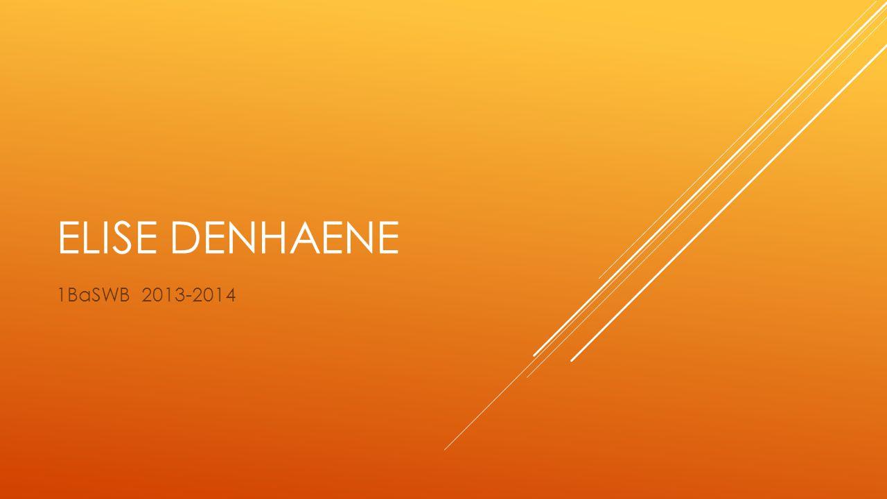 ELISE DENHAENE 1BaSWB 2013-2014