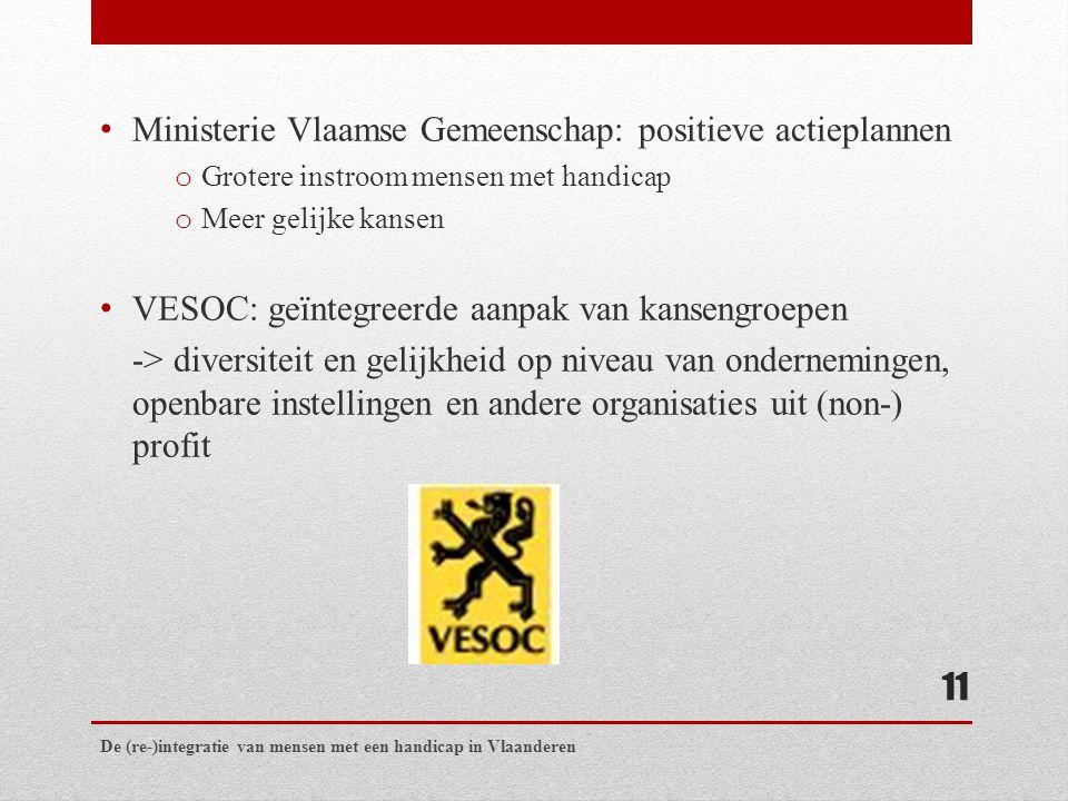 Ministerie Vlaamse Gemeenschap: positieve actieplannen o Grotere instroom mensen met handicap o Meer gelijke kansen VESOC: geïntegreerde aanpak van kansengroepen -> diversiteit en gelijkheid op niveau van ondernemingen, openbare instellingen en andere organisaties uit (non-) profit De (re-)integratie van mensen met een handicap in Vlaanderen 11