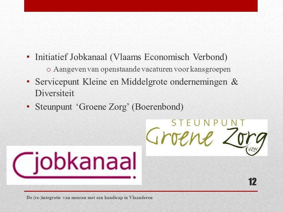 Initiatief Jobkanaal (Vlaams Economisch Verbond) o Aangeven van openstaande vacaturen voor kansgroepen Servicepunt Kleine en Middelgrote ondernemingen & Diversiteit Steunpunt 'Groene Zorg' (Boerenbond) De (re-)integratie van mensen met een handicap in Vlaanderen 12