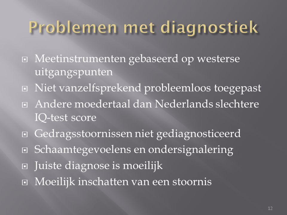  Meetinstrumenten gebaseerd op westerse uitgangspunten  Niet vanzelfsprekend probleemloos toegepast  Andere moedertaal dan Nederlands slechtere IQ-