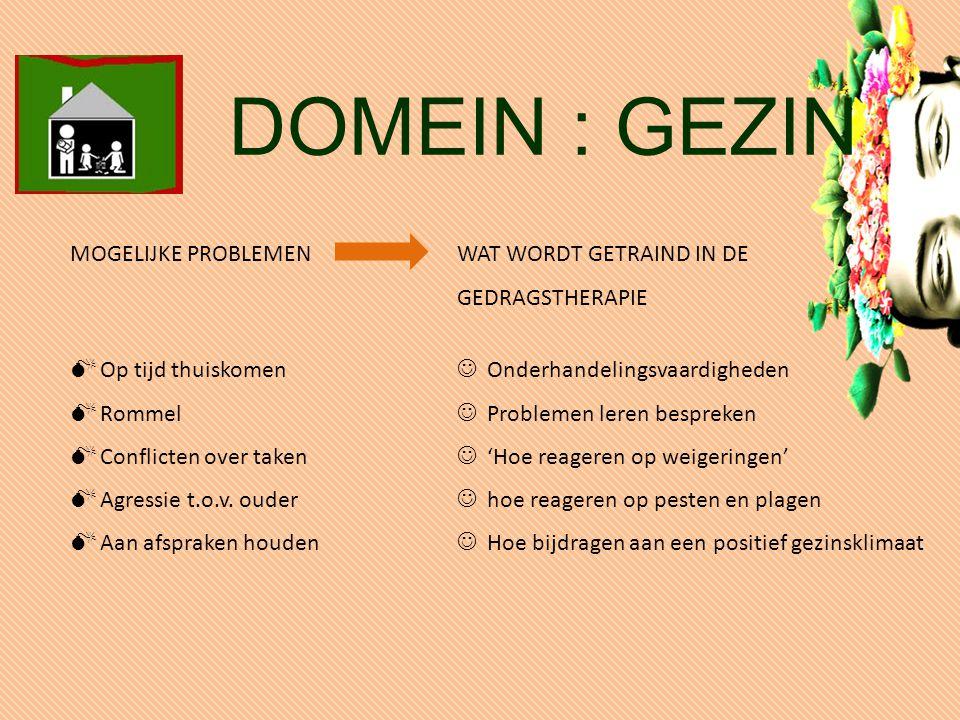 MOGELIJKE PROBLEMEN WAT WORDT GETRAIND IN DE GEDRAGSTHERAPIE  Op tijd thuiskomen  Rommel  Conflicten over taken  Agressie t.o.v.